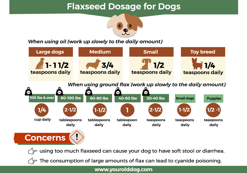 flaxseed dosage for dogs