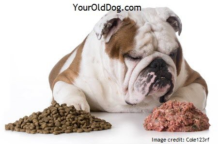 Feeding an older dog a raw diet is forumfinder Gallery