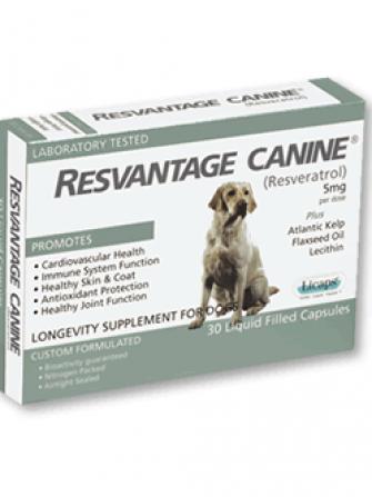 resvantage canine
