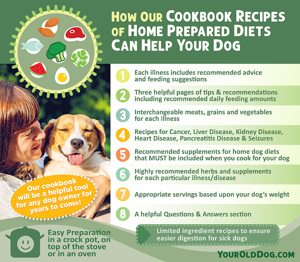 Homemade Recipes for Dogs