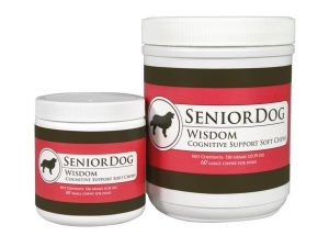 senior dog wisdom for dog alzheimers