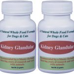organic kidney glandular for dogs