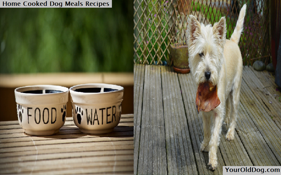Home Cooked Dog Meals Recipes