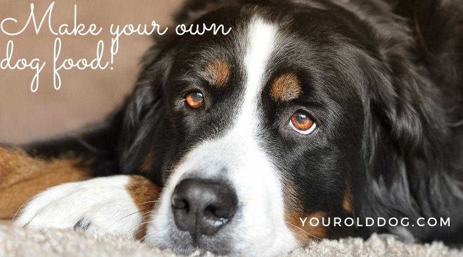 make your own dog food