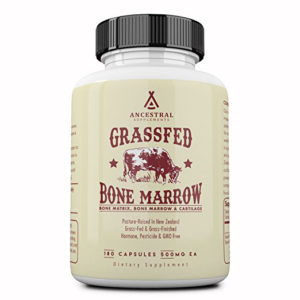 bone-marrow-1