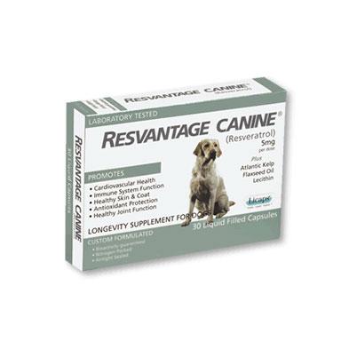 resvantage-canine