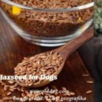 using flaxseed for dogs