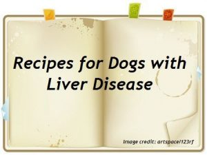 dog liver disease recipes tested approved