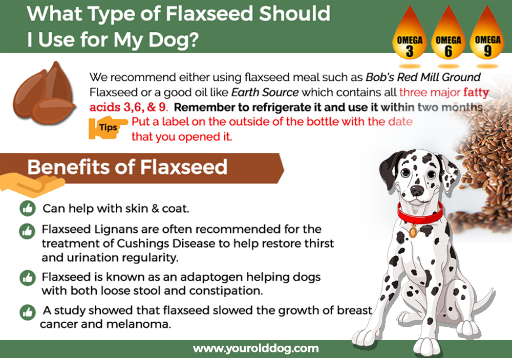 what type of flaxseed should I use for my dog