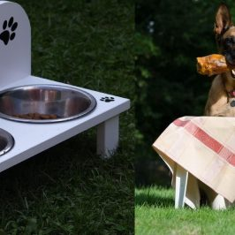 Make Your Own Dog Food : Home Cooked Dog Diet