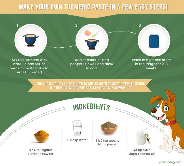 how to make your own turmeric paste for dogs
